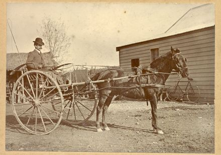 Albert Victor Chaney with Horse and Cart (date unknown) 95-027.jpg